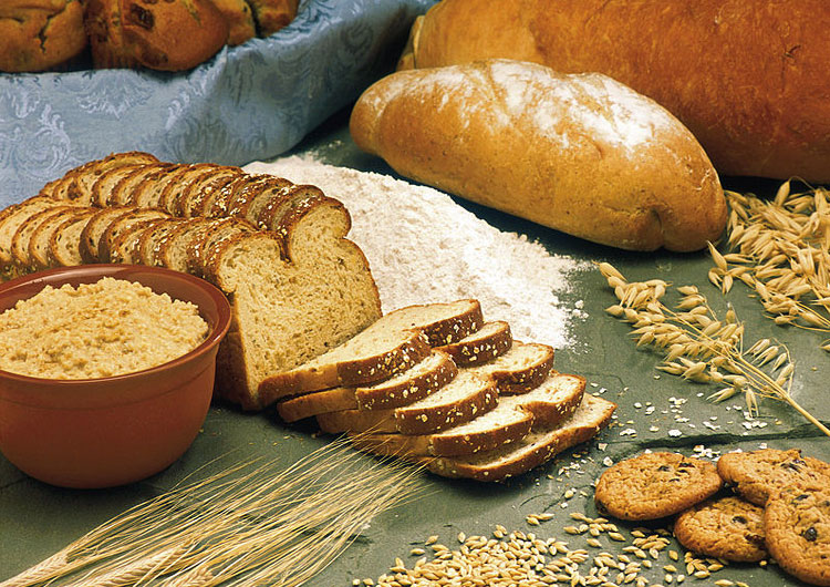 bakery industry and the components