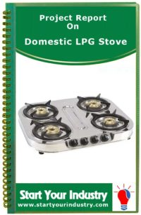 Project Report on Domestic LPG Stove